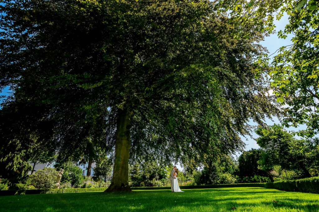Brautpaar unter wundervollem Baum