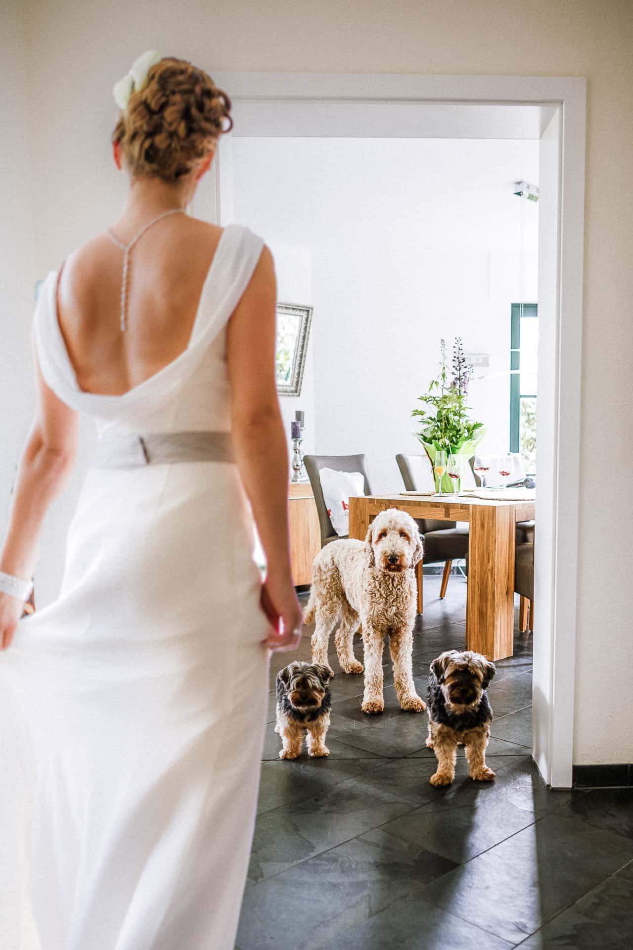 Die Braut wird verabschiedet. Sieger beim Fotowettbewerb.